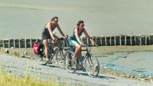 Fahrradfahren am Deich