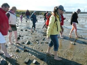 Wattwanderung Bensersiel an der Nordsee