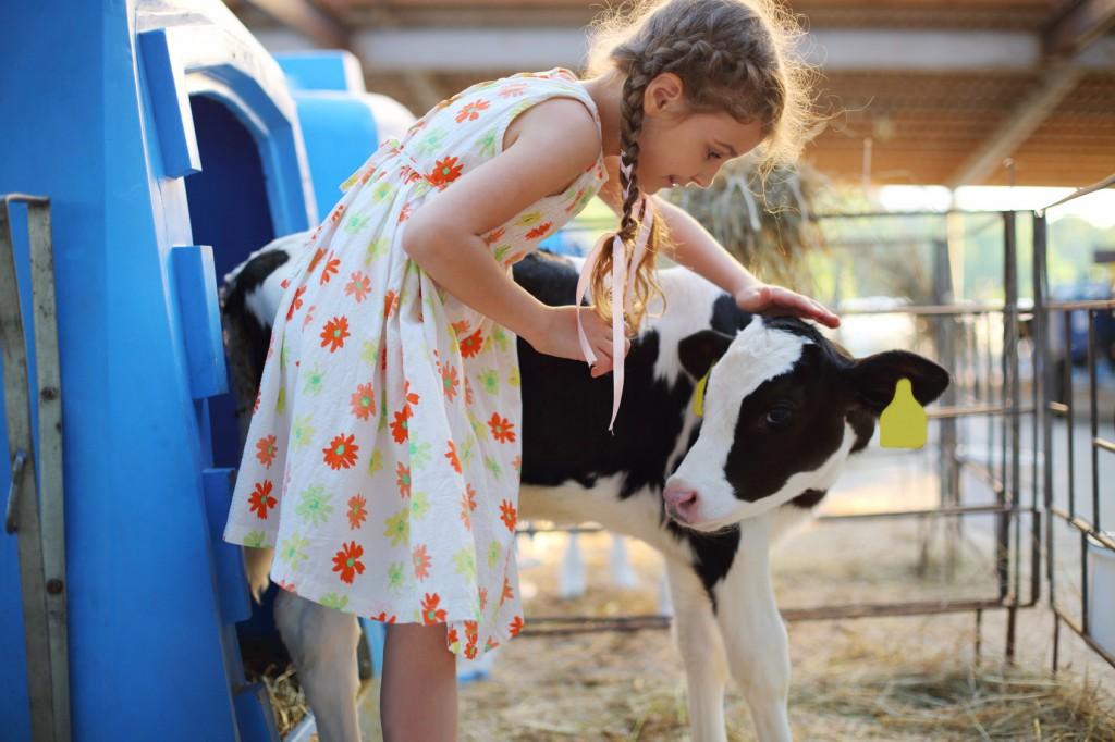 Bauernhofbesichtigung Ostfriesland