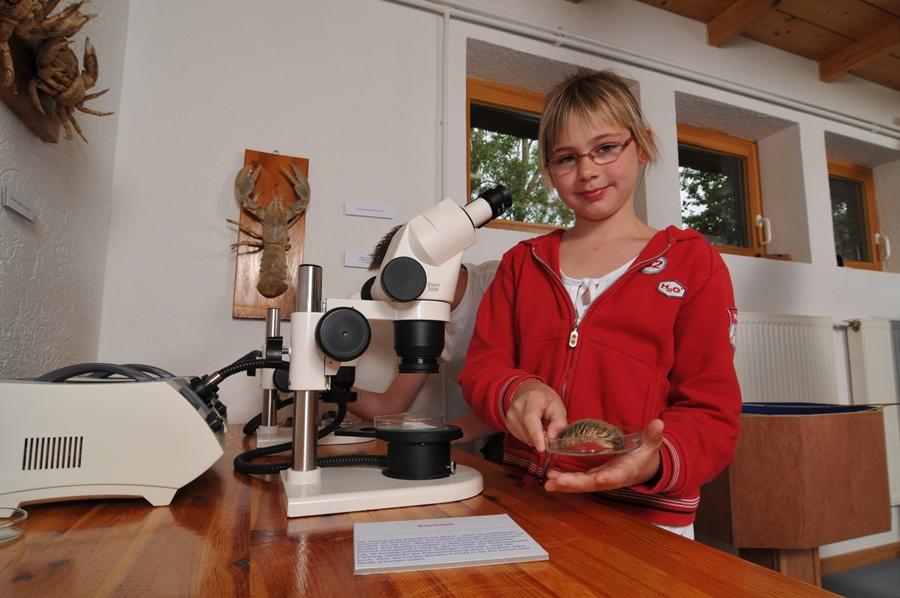 Forscher Wattenhuus