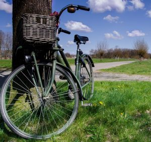 Fahrrad auf grüner Wiese