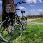 Fahrradwoche in Bensersiel