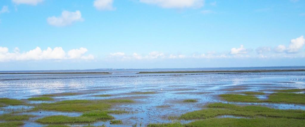 Wattenmeer Bensersiel